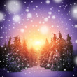 Beautiful winter landscape with Christmass trees — Stockfoto