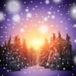 güzel kış manzarası ile Sunni Noel ağaçlar — Stok fotoğraf