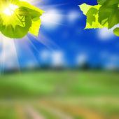 Vägen lane och gröna fält — Stockfoto