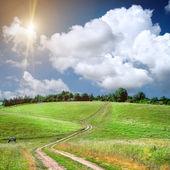 дорога лейн и зеленые поля — Стоковое фото