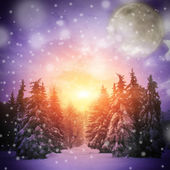 Beautiful winter landscape with Christmass trees — Stock Photo