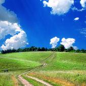 Yol lane ve yeşil alanlar — Stok fotoğraf