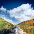 Autumn landscape with the mountian river — Stock Photo