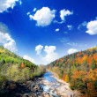 Autumn landscape with the mountian river — Stock Photo #34942961
