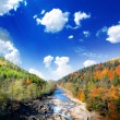 Stock Photo: Autumn landscape with the mountian river