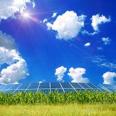 Yeşil çimenlerin üzerinde gökyüzü alanıyla — Stok fotoğraf