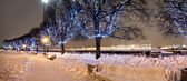 De bomen in de kerst verlichting — Stockfoto