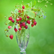 Wild strawberries in a glass — Stock Photo