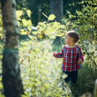 Little girl in spring forest — Stock Photo