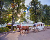 Carriage with horses — Stockfoto