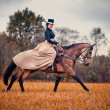 Horse-hunting with ladies in riding habit — Stok fotoğraf