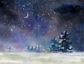 Night rural landscape at winter — Stock Photo