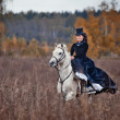 Horse-hunting with ladies in riding habit — Stock Photo #36417613