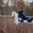 Stock Photo: Horse-hunting with ladies in riding habit