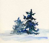 Sketch of spruce tree — Stock Photo