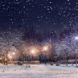 Night city park under first snow — Stock Photo
