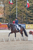 The Winner Inessa Merculova on horse named Mister X — 图库照片