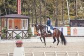 The Winner Inessa Merculova on horse named Mister X — 图库照片