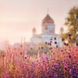 View of the Cathedral of Christ the Savior in Moscow — Stock Photo #48957419