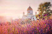 View of the Cathedral of Christ the Savior in Moscow — Stok fotoğraf