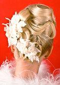 Hairdress — Stock Photo