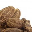 Black cardamom pods - Foto de Stock