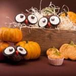 Pumpkin muffins — Stock Photo #13781163