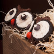 Owl cookies — Stock Photo