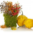 Beautiful autumn bouquet — Stock Photo #13781220