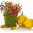 Beautiful autumn bouquet — Stock Photo