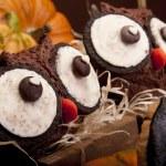 Owl muffins — Stock Photo #13781246