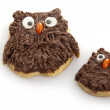 Owl cookies - Foto Stock