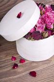 Roses in gift box — Stock Photo