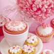 Still life of cupcakes with flower — Stock Photo