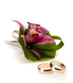 Wedding rings and orchid flower — Stok fotoğraf