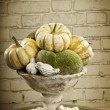 Stock Photo: Still life with old vase and pumpkin