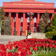 Red tulips near the Taras Shevchenko National University, Kiev, Ukraine - Stock Photo