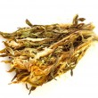 Dried Chinese Lily - Stock Photo