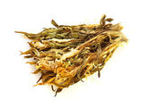 Dried Chinese Lily — Stock Photo