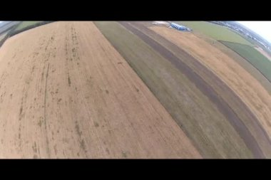 Skydiver making a smooth landing — Stock Video