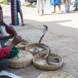 Indian snake charmer. Hampi, India - Stock Photo