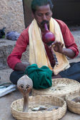 Indian snake charmer with cobra. Hampi, India — Stock Photo