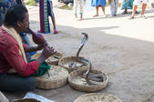 Indian snake charmer. Hampi, India — Stock Photo