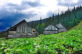 Old villiage in Carpathian mountains — Stock Photo