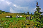 Small houses in Carpathian mountains — Stock Photo