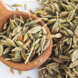 Organic fennel seed — Stock Photo