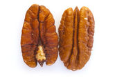 Two Pecan Nuts — Stock Photo