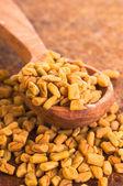 Fenugreek Seeds in spoon — Stock Photo