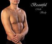 Muscular male body — Stock Photo