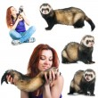 Woman with ferret — Stock Photo
